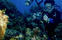 Povandeninė fotografija